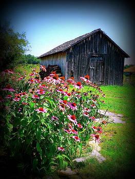 Virginia Barn and Flowers by Jo Anna Wycoff