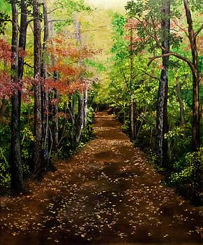 Virginia Path by Jessica Tookey