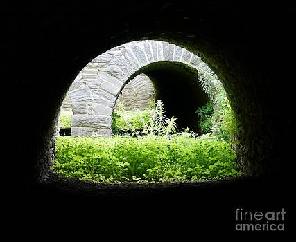 Virginius Island Aqueducts by Jane Ford