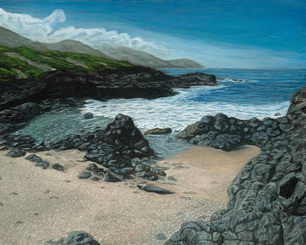 Visitor at Kaena Point by Michael Allen Wolfe