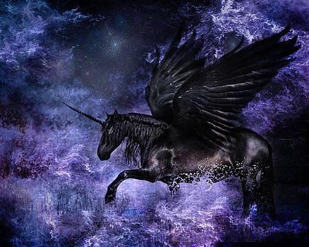 Vivid Dream by Pamela Hagedoorn