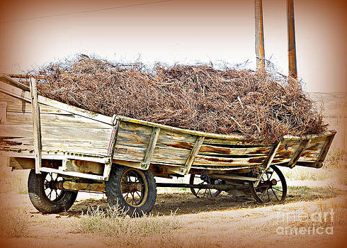 Wagon Of Wire by Heidi Manly