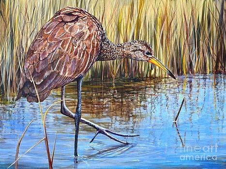 AnnaJo Vahle - Wailing Bird