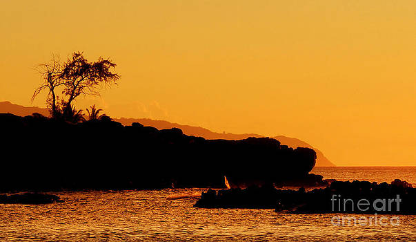 Waimea Bay Sunset by Kristine Merc