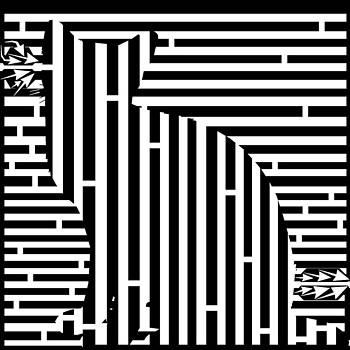 Waiting Cat Maze by Yonatan Frimer Maze Artist
