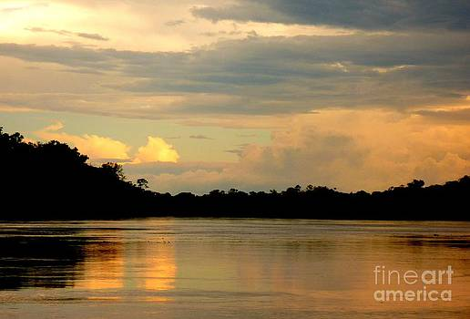 Waiting for the Dolphins on the Amazon by Alex Thomas