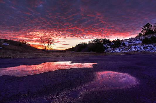 Wake Up Call by Chris  Allington