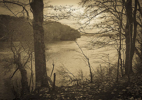 Frank Winters - Wakeby Pond Fall 2014