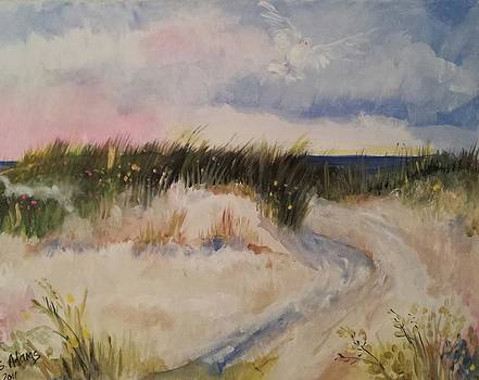 Walk by the shore by Paula Stacy Adams