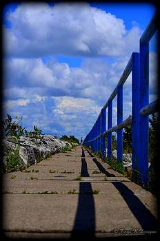 Walk into the Blue by Terri K Designs