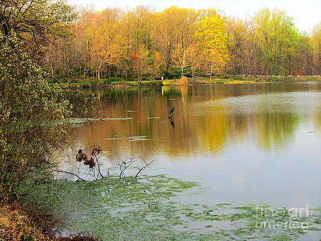 Walking on a Fall Day by Avis  Noelle