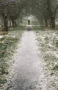 Svetlana Sewell - Walking on the winter path