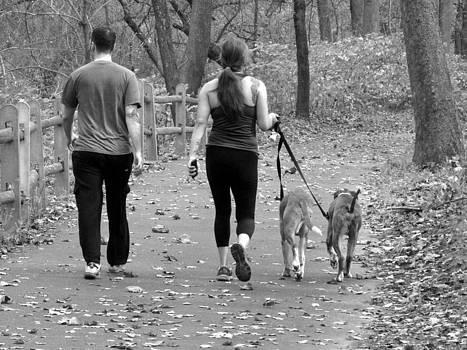 Walking the Dogs by Dorin Adrian Berbier