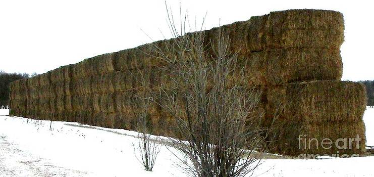 Gail Matthews - Wall of Hay Bales