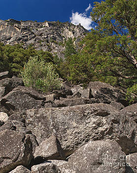 Charles Kozierok - Wall of Rock