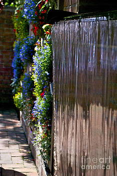Wall of Water and Flowers by Nikki Criel