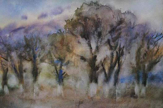 Walnut Trees by Litvac Vadim