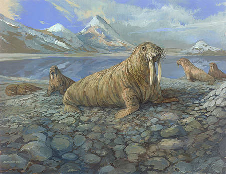 Walrus by ACE Coinage painting by Michael Rothman