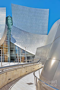 David Zanzinger - Walt Disney Concert Hall Los Angeles CA 2