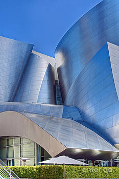 David Zanzinger - Walt Disney Concert Hall Vertical Exterior Building Frank Gehry Architect 12