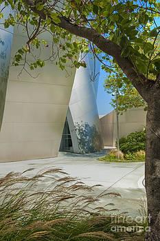 David  Zanzinger - Walt Disney Concert Hall Vertical Exterior Building Frank Gehry Architect 2
