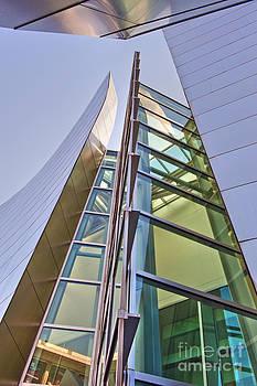 David  Zanzinger - Walt Disney Concert Hall Vertical Exterior Building Frank Gehry Architect 6
