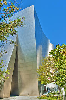 David Zanzinger - Walt Disney Concert Hall Vertical Exterior Building Frank Gehry Architect