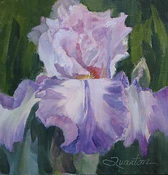 Waltzing Matilda by Lori Quarton