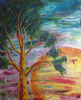Warm Evening Tree 3 by Donovan Hubbard