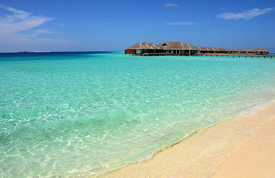Jenny Rainbow - Warm Welcoming. Maldives