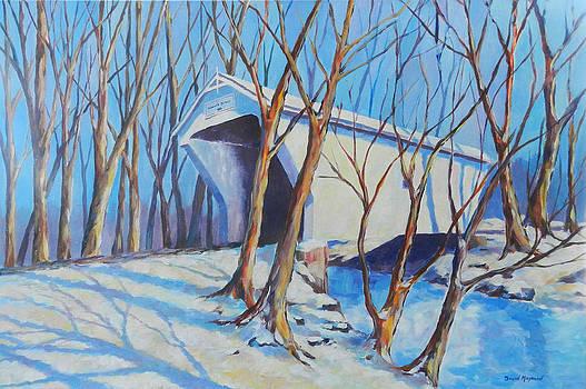 Warnke Bridge Preble County by David  Maynard
