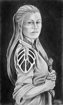 Warrioress by Lisa Nadler
