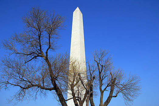 Washington DC Monument by Bhupendra Singh