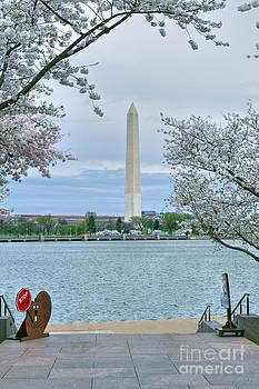 David  Zanzinger - Washington Monument Tidal Basin National Mall Washington DC
