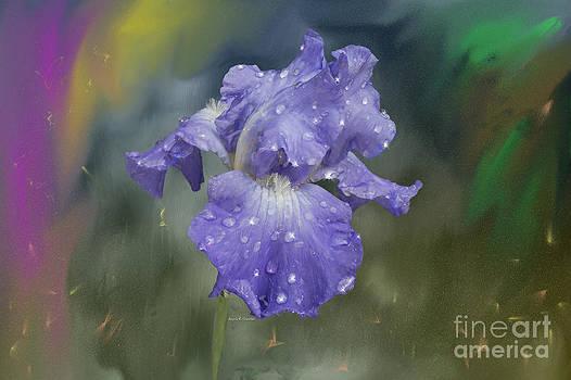 Angela A Stanton - Water Drops on Blue Bearded Iris