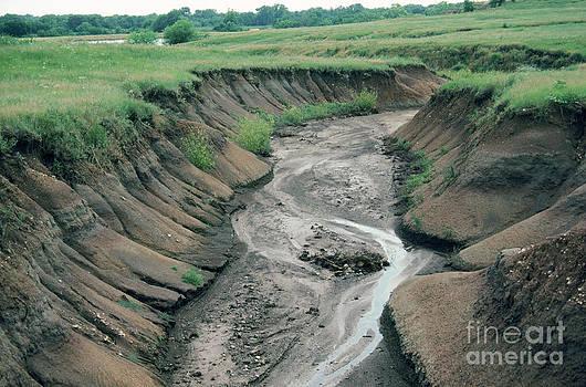 Larry Miller - Water Erosion