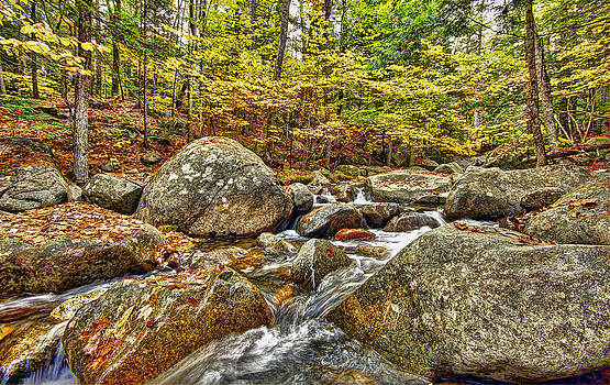 James Steele - Water Fall In New Hampshire