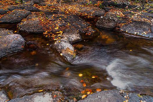 Jenny Rainbow - Water Flow through the Boulders. Eureka. Mauritius