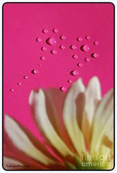 Water Flowers by Kip Krause