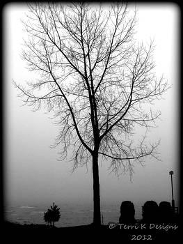 Water Fog by Terri K Designs