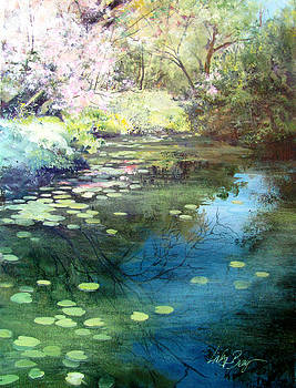 Water lilies by Linda Bray