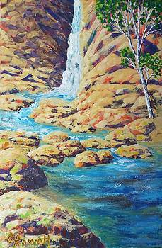 Water Rocks And A Tree by Gary Rowell