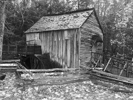 Water Wheel Shed by Suzanne  McClain