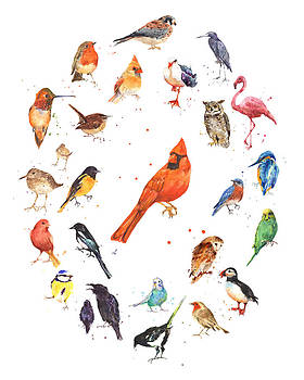 Watercolor Bird Painting by Alison Fennell