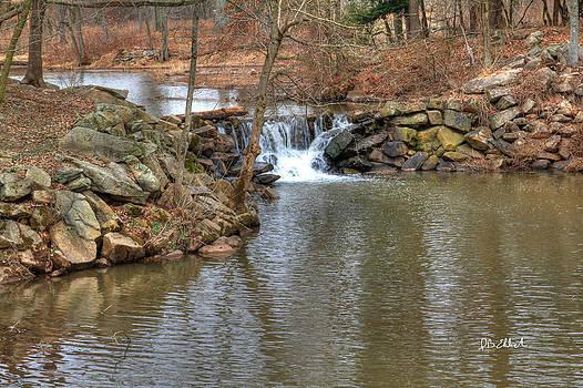 Waterfall 1 by IB Ehrlich