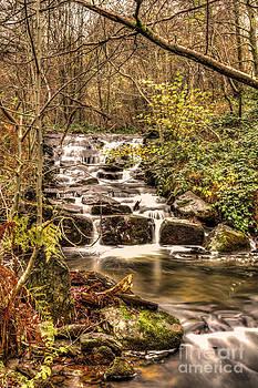 Steve Purnell - Waterfall 2