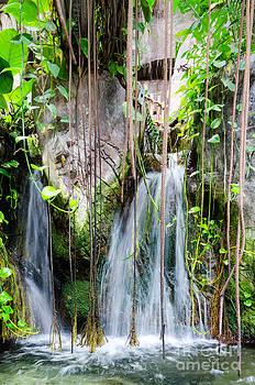Kathleen K Parker - Waterfall at Aquarium of Americas in New Orleans