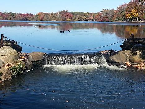 Waterfall At Belmont Lake by Neal David Reilly