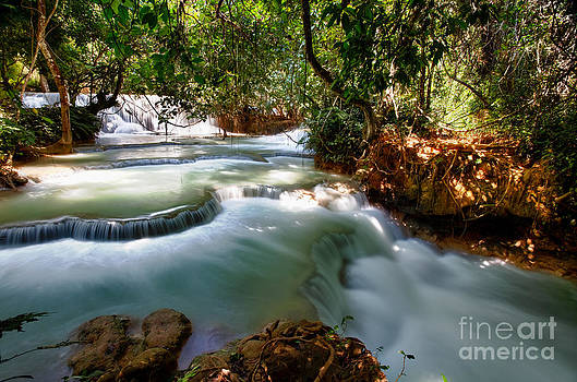 Fototrav Print - Waterfall in Forest