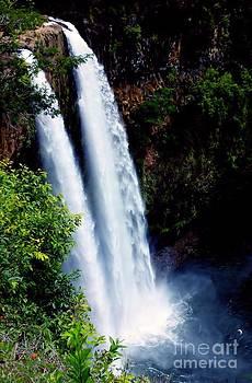 Waterfall Kauai by Tabatha Knox